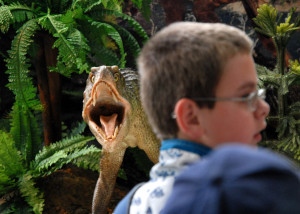 Visit to the Mesozoic